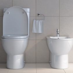 Toilet bowl and bidet