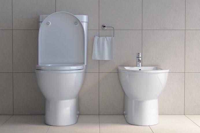 Toilet bowl and bidet