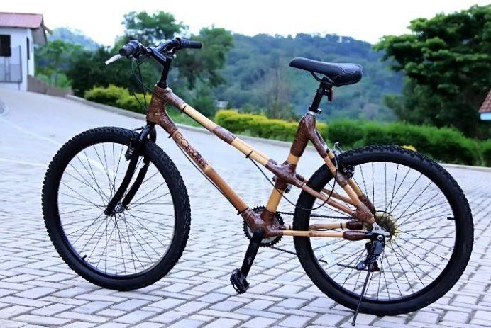 Ghana Bamboo Initiative